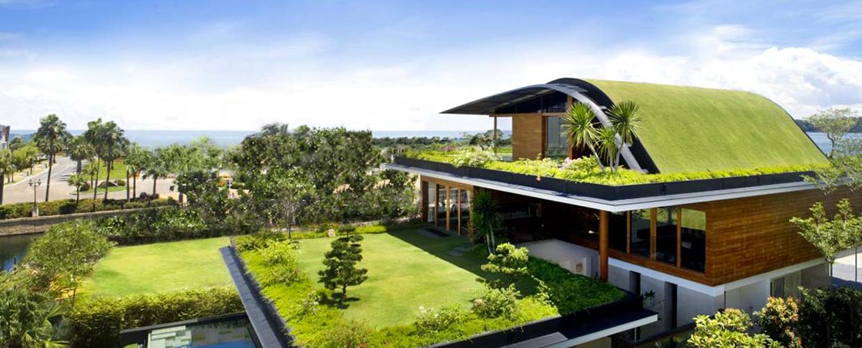 Dach-Begrünungen mit vorher bepflanzten Pflanz-Schalen für besseres Wasser-Management
